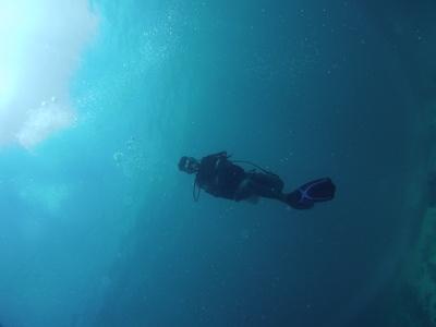 Diver Alone Floating